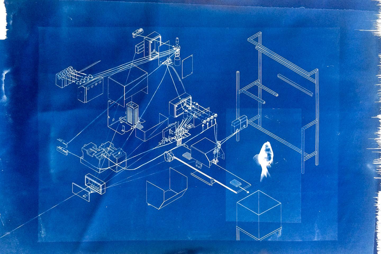 blueprint-sterile1-1440