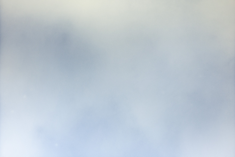 RevitalCohen&TuurVanBalen-IMG_3288-Blue Roan (mastoid crest)-crop 1440